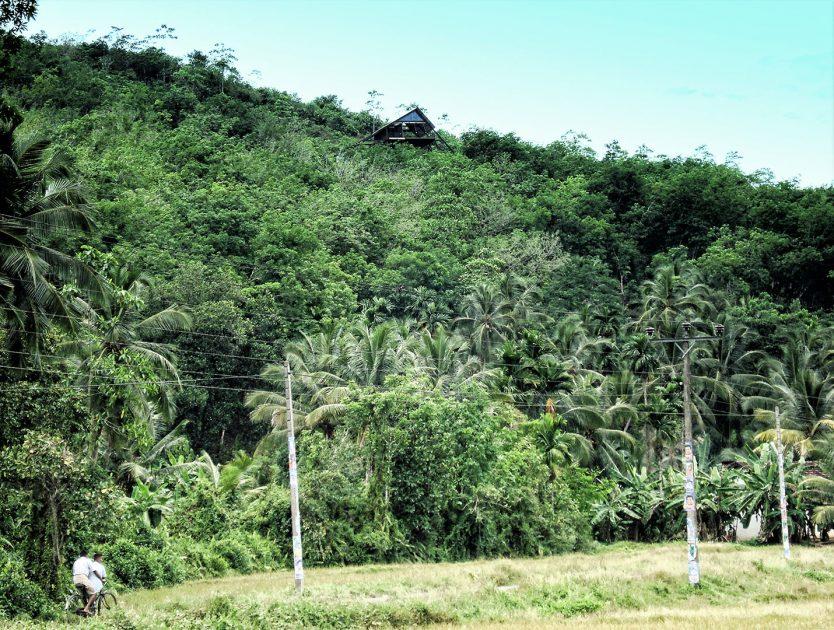 Estate Bungalow / Narein Perera   bausource